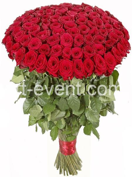 Букет -101 Красная Роза-_01