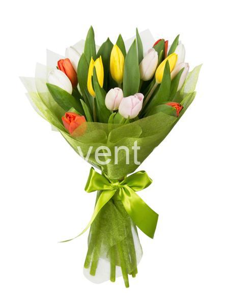 Букет -15 Тюльпанов микс-_01