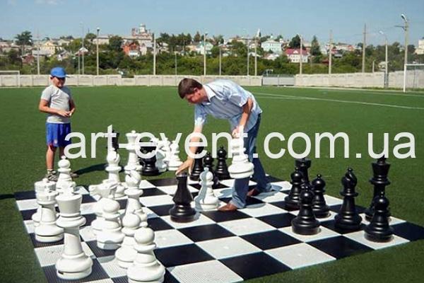 Гигантские шахматы_001